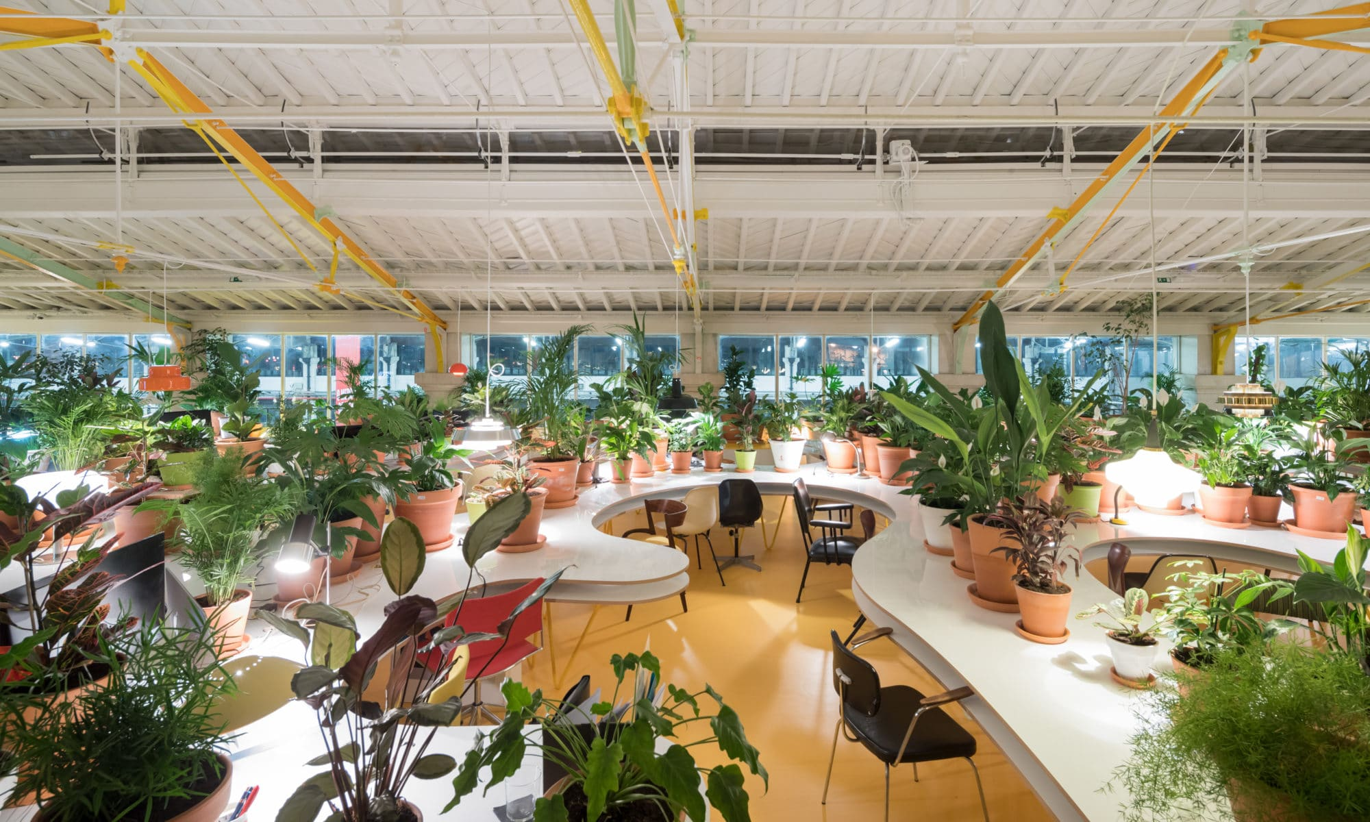 Desks in co-working space covered in potted plants